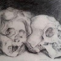 Nous deux. Crânes, amphi de morpho des Beaux-arts de Paris